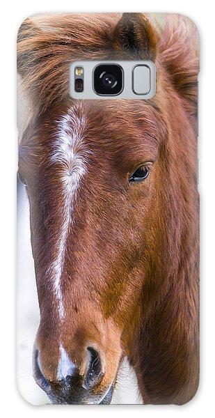 A Chestnut Horse Portrait Galaxy Case