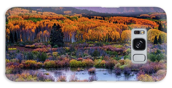 A Colorado Fall Along Kebler Pass Galaxy Case