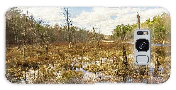 A Connecticut Marsh Galaxy Case