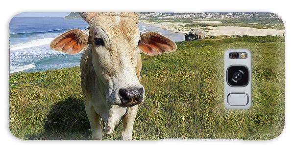 A Cow At The Beach Galaxy Case