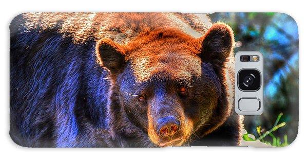 A Curious Black Bear Galaxy Case