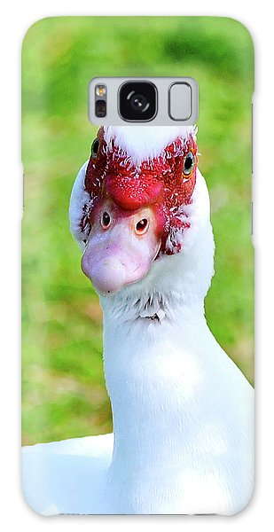A Curious Muscovy Duck  Galaxy Case