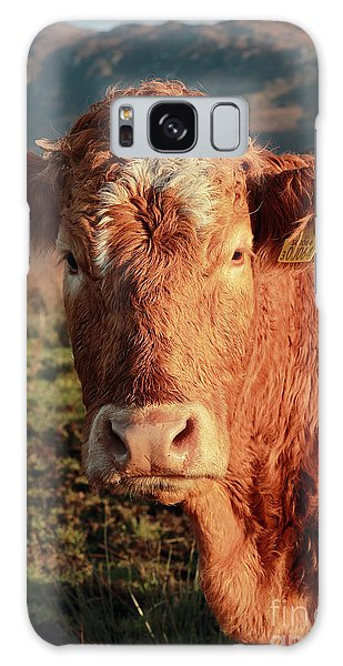 A Curious Red Cow Galaxy Case