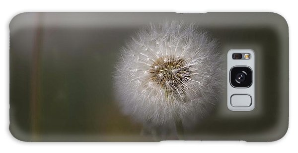 Galaxy Case featuring the photograph A Dandelion by Lora Lee Chapman