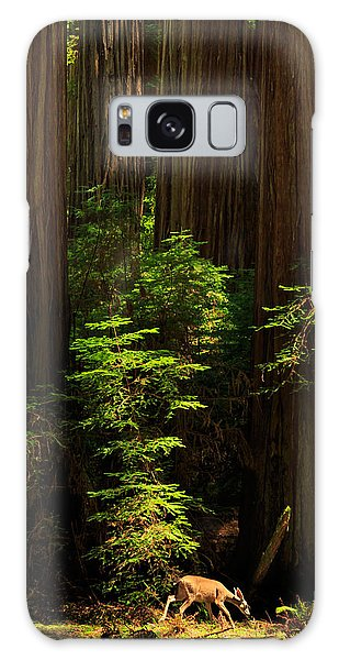 A Deer In The Redwoods Galaxy Case by James Eddy