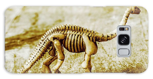 Bone Galaxy Case - A Diploducus Bone Display by Jorgo Photography - Wall Art Gallery