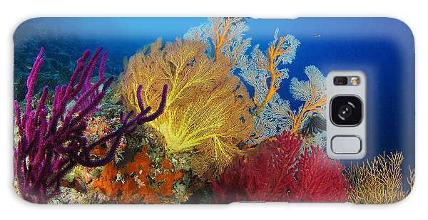 Scuba Diving Galaxy Case - A Diver Looks On At A Colorful Reef by Steve Jones