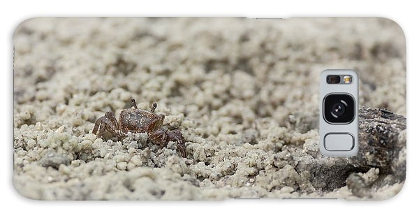 A Fiddler Crab In The Sand Galaxy Case