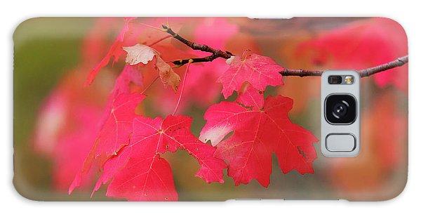 A Flash Of Autumn Galaxy Case