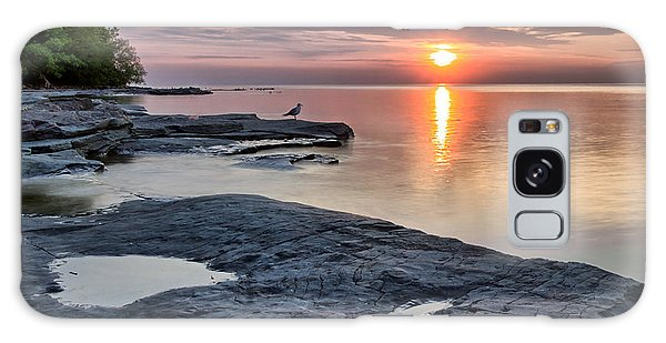 A Flat Rock Sunset With Seagull Galaxy Case