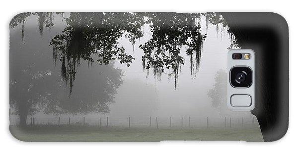 A Foggy Day In Rural Fl Galaxy Case by Marilyn Carlyle Greiner
