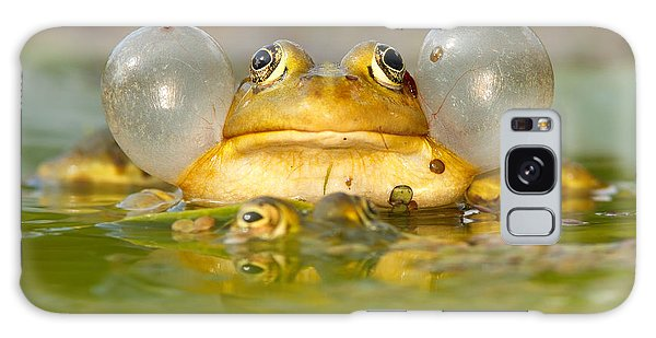 A Frog's Life Galaxy Case by Roeselien Raimond