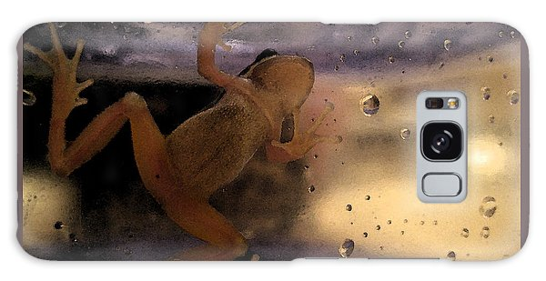 A Frogs World Galaxy Case