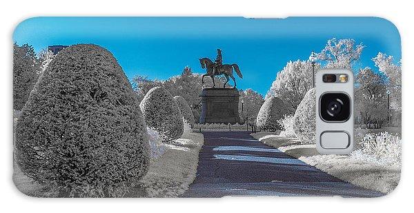 A Frosted Boston Public Garden Galaxy Case