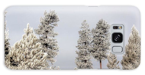 A Frosty Morning 2 Galaxy Case by Janie Johnson