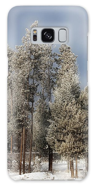 A Frosty Winter Morning Galaxy Case