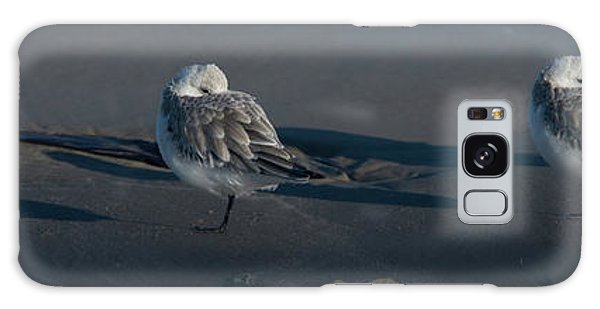 Padre Island National Seashore Galaxy S8 Case - A Gathering Of Dunlins by Frank Madia