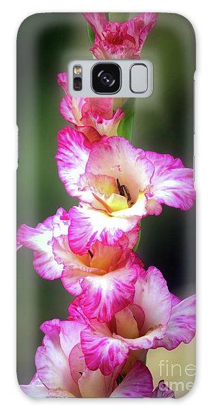 A Gladiolus Galaxy Case