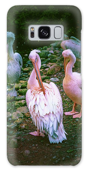 a group of swans near the pond on a Sunny summer day Galaxy Case