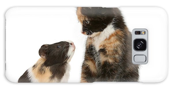 A Guinea For Your Thoughts Galaxy Case