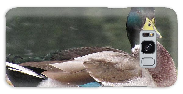 A Handsome Mallard Galaxy Case