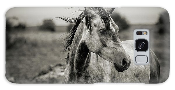 A Horse In Profile In Black And White Galaxy Case