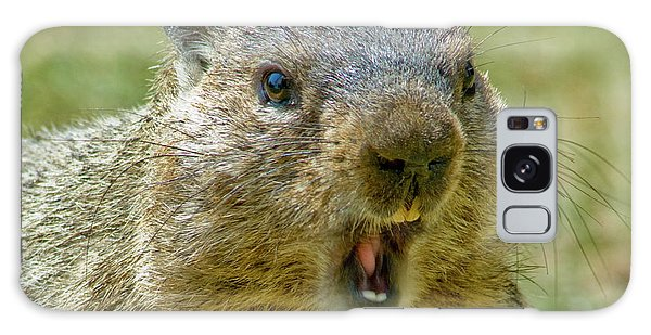 Groundhog Galaxy Case - A Hungry Fellow  by Paul W Faust - Impressions of Light