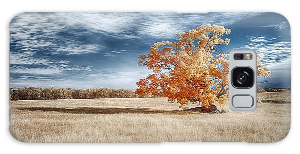 A Lone Tree Galaxy Case