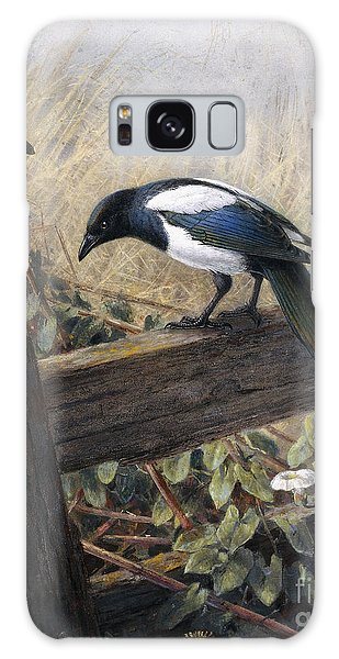 A Magpie Observing Field Mice Galaxy Case