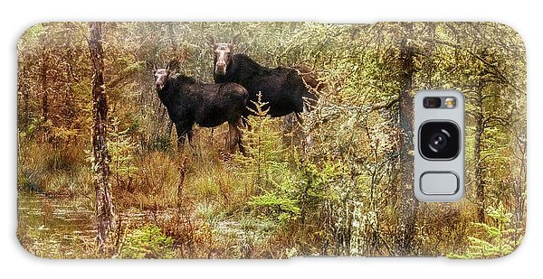 A Mother And Calf Moose. Galaxy Case