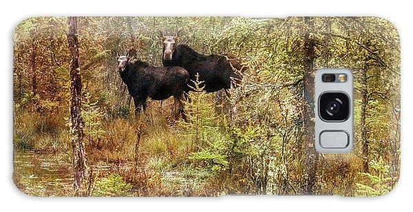 A Mother And Calf Moose. Galaxy Case