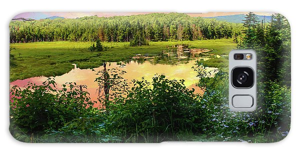 A New England Bog. Galaxy Case