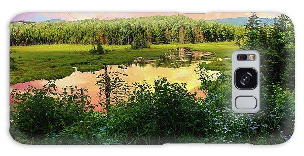 A New England Bog. Galaxy Case
