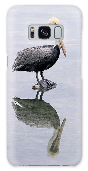 A Noble Bird Is The Pelican Galaxy Case