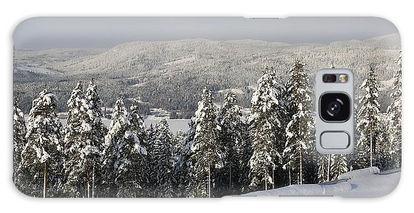 A Norwegian Valley  Galaxy Case