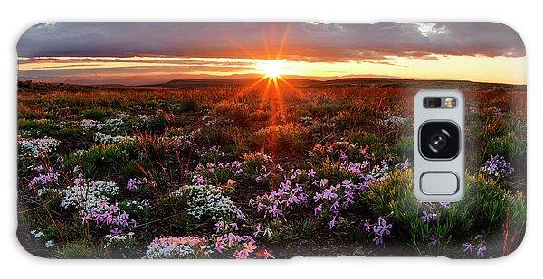 A Nuttalls Linanthastrum Morning Galaxy Case by Leland D Howard