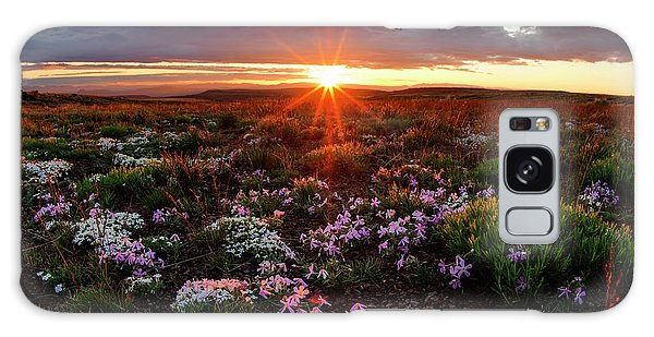 A Nuttalls Linanthastrum Morning Galaxy Case by Leland D Howard