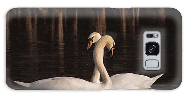 Galaxy Case - A Painting Of A Pair Of Mute Swans by John Edwards