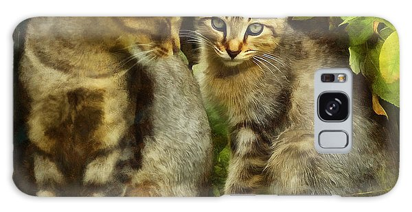 A Pair Of Feral Cats Galaxy Case