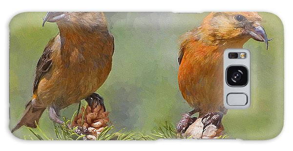 Crossbill Galaxy Case - A Pair Of Male Red Crossbills - Painted by Ericamaxine Price