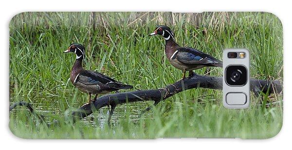 A Pair Of Wood Ducks Galaxy Case