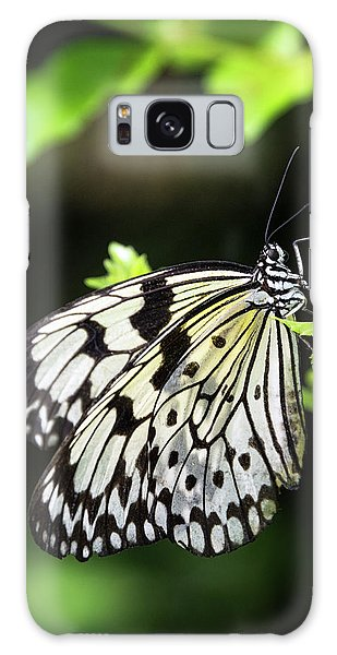 Galaxy Case featuring the photograph A Paper Kite Butterfly On A Leaf  by Saija Lehtonen