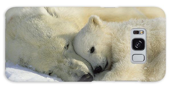 Planets Galaxy Case - A Polar Bear And Her Cub Napping by Norbert Rosing