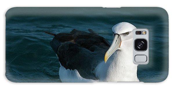 A Portrait Of An Albatross Galaxy Case