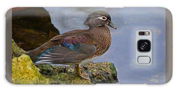 A Pretty Female Painted Wood Duck Galaxy Case by Judy Wanamaker