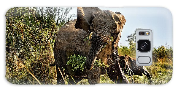 A Protective Mama Elephant With Calf  Galaxy Case