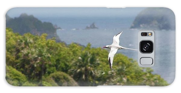 Galaxy Case - A Red-billed Tropicbird (phaethon by John Edwards