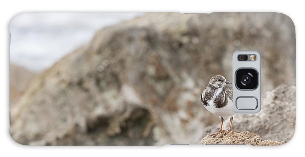 A Ruddy Turnstone Perched On The Rocks Galaxy Case