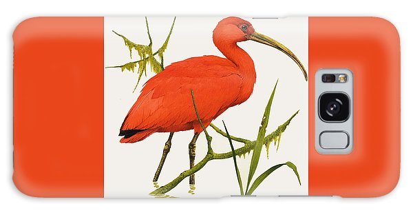 A Scarlet Ibis From South America Galaxy S8 Case