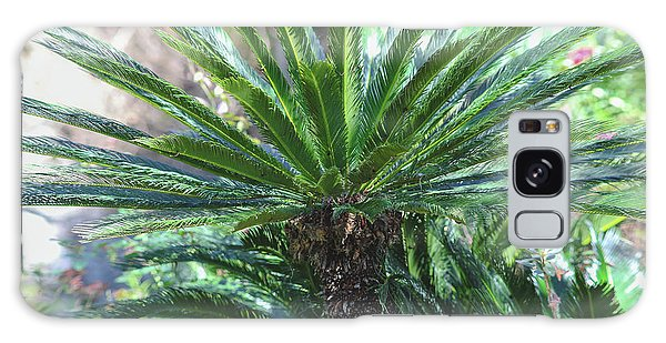 A Shady Palm Tree Galaxy Case